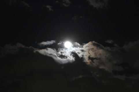月夜01.jpg