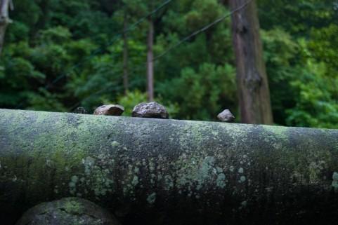 神社空間01.jpg