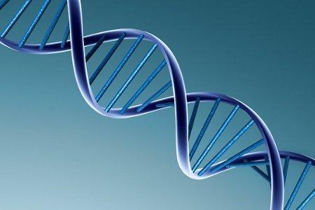遺伝子01.jpg