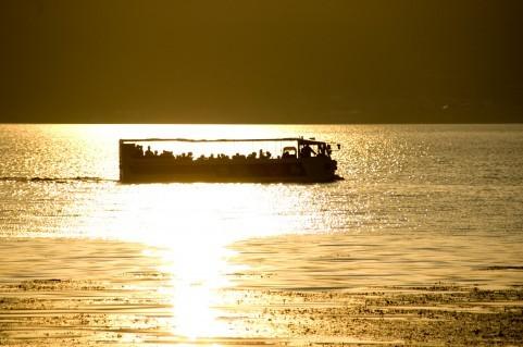 金色湖面001.jpg